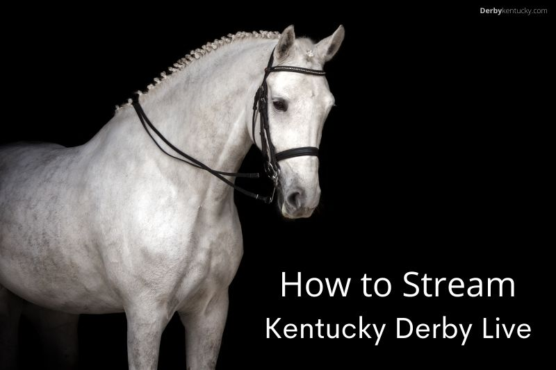 How to Stream Kentucky Derby Live